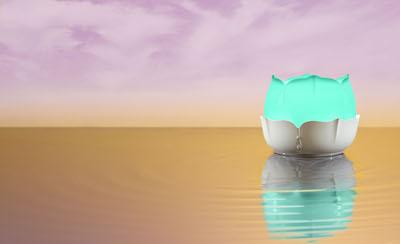 Lotus Diffuser landscape