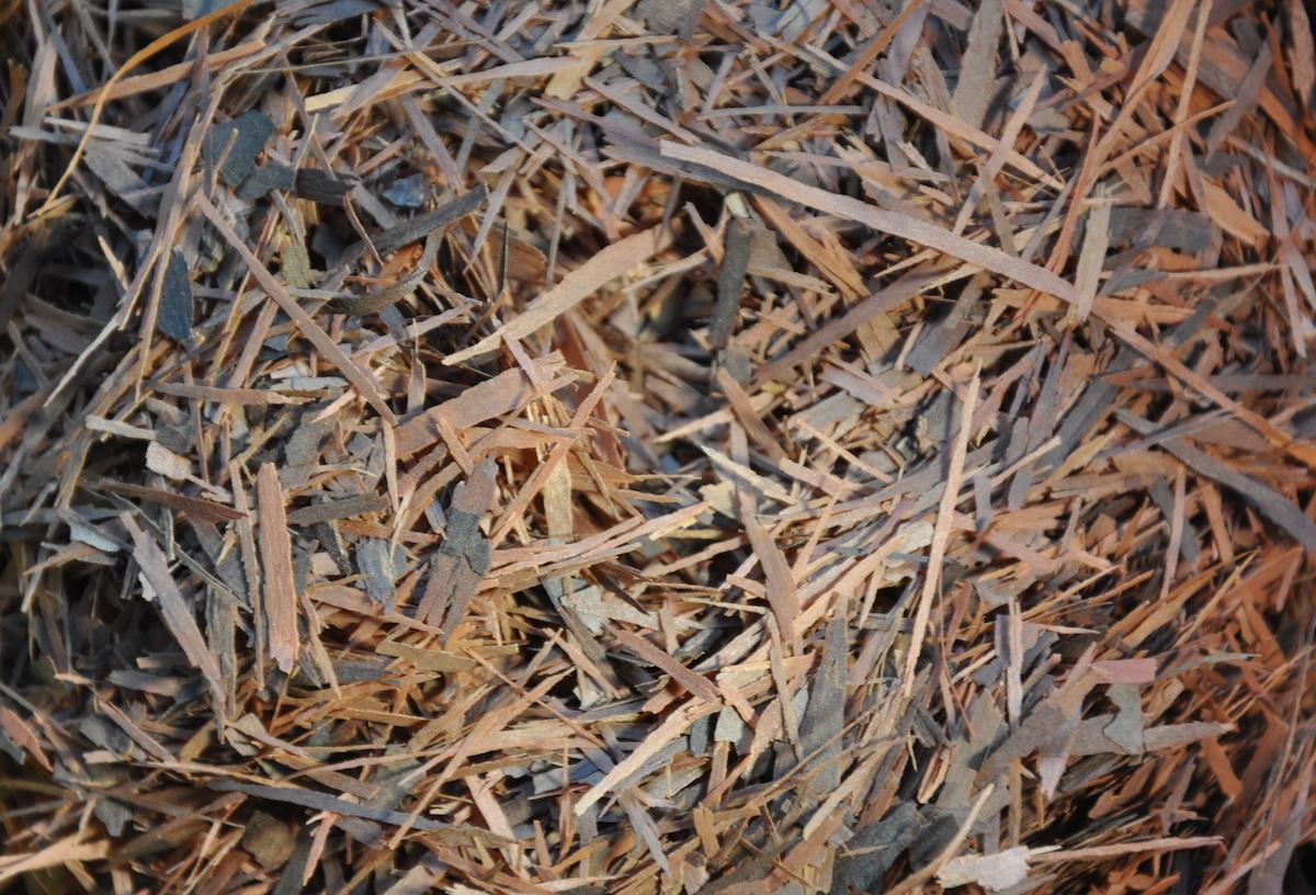 Pau d'Arco thee gekapt (100 gram)