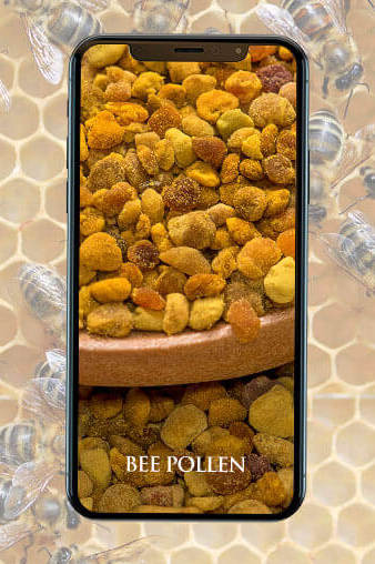 The Amplified Energetic Signature of Bee Pollen
