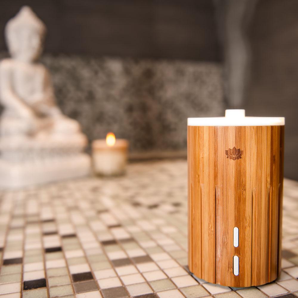 Bamboo Esta